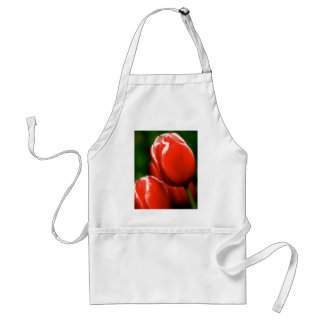 Snow-capped Tulip Adult Apron