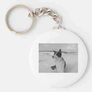 Snow Collie Basic Round Button Keychain