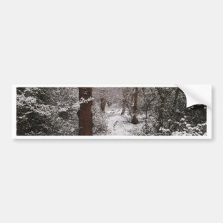 Snow Covered Ancient Woodland Car Bumper Sticker