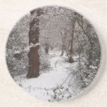 Snow Covered Ancient Woodland Coaster