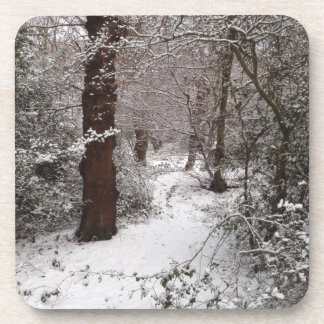 Snow Covered Ancient Woodland Drink Coasters
