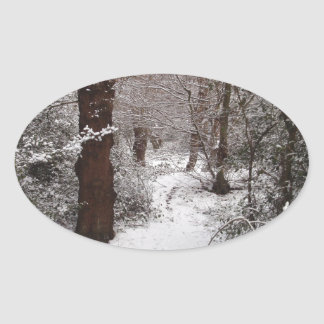Snow Covered Ancient Woodland Oval Sticker
