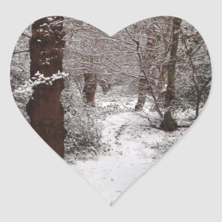 Snow Covered Ancient Woodland Stickers