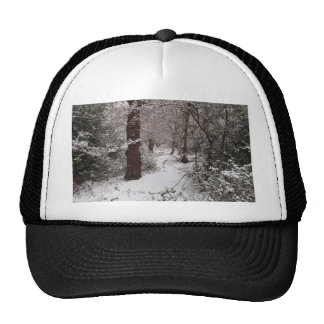 Snow Covered Ancient Woodland Trucker Hat