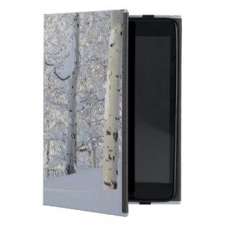 Snow-Covered Aspens, Beartrap-Desolation Ridge Case For iPad Mini