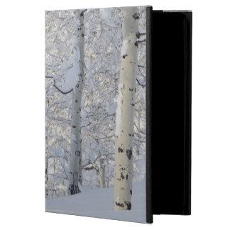 Snow-Covered Aspens, Beartrap-Desolation Ridge iPad Air Case