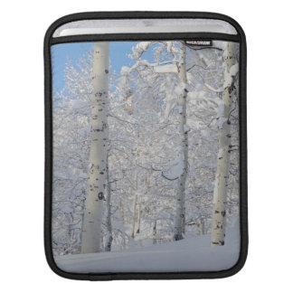 Snow-Covered Aspens, Beartrap-Desolation Ridge iPad Sleeve