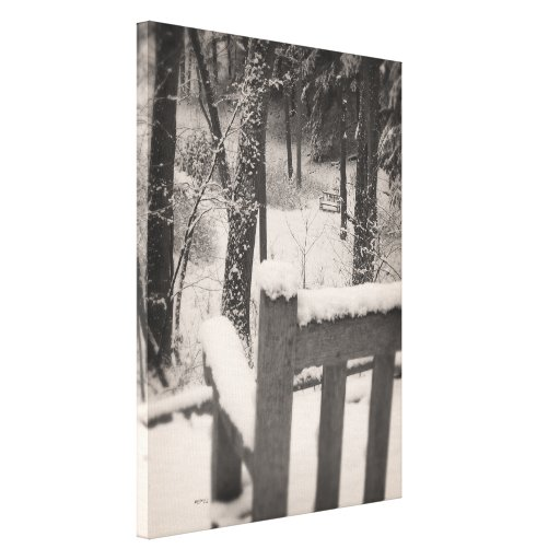 Snow Covered Benches Gallery Wrap Canvas
