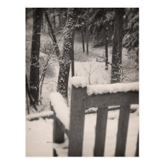 Snow Covered Benches Postcard