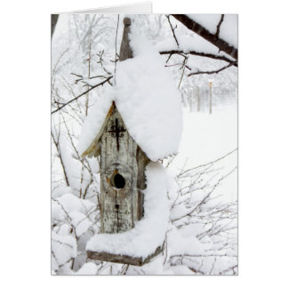 Snow-covered Bird House Note Card - Blank Inside