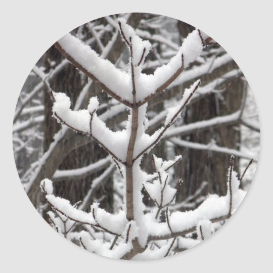 Snow-covered Branches Classic Round Sticker