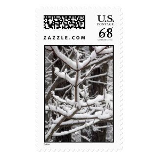Snow-covered Branches – Large stamp