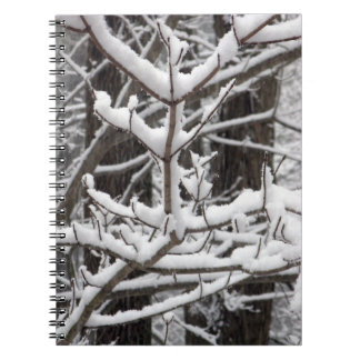 Snow-covered Branches Notebook