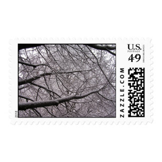 Snow Covered Branches Postage