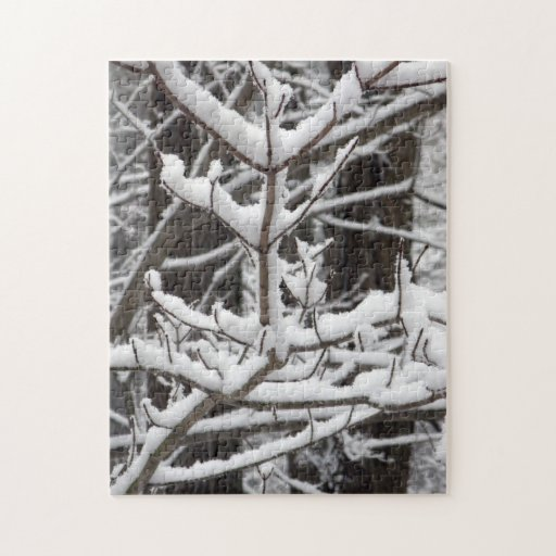Snow-covered Branches Puzzle