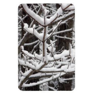 Snow-covered Branches Rectangular Photo Magnet
