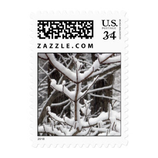 Snow-covered Branches – Small stamp