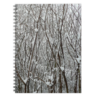 Snow Covered Branches Winter Abstract Photography Notebook