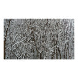 Snow Covered Branches Winter Abstract Photography Poster