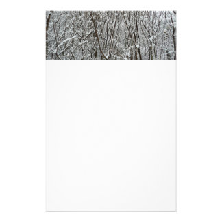 Snow Covered Branches Winter Abstract Photography Stationery