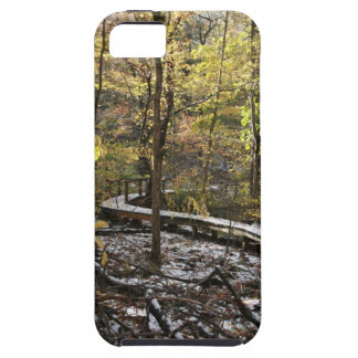 Snow Covered Bridge iPhone SE/5/5s Case