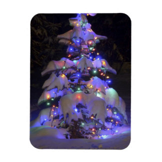 Snow Covered Brightly Lit Christmas Tree Magnet