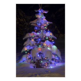 Snow Covered Brightly Lit Christmas Tree Poster