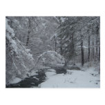 Snow Covered Brook Post Cards