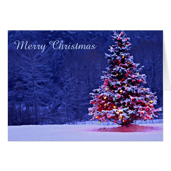 Snow covered christmas tree on a serene night card zazzle