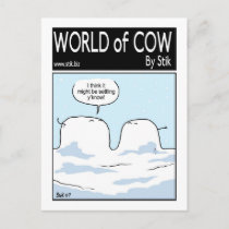 Snow Covered Cow Postcard