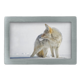 Snow-covered Coyote in Yellowstone National Park Belt Buckle
