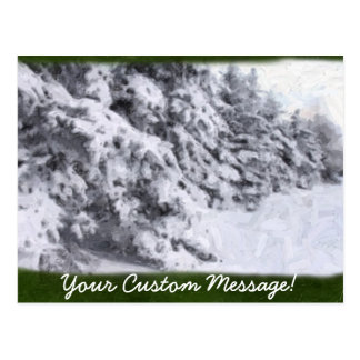 Snow-Covered Evergreen Trees Postcard