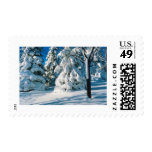 Snow Covered Evergreens Postage Stamps