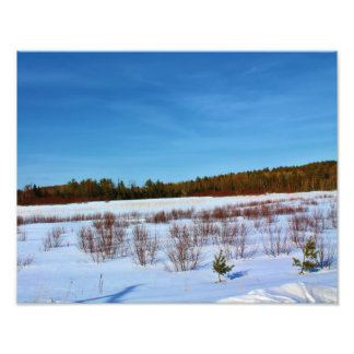 Snow Covered Field Photo Print