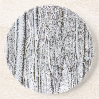Snow Covered Forest #2.jpg Beverage Coasters