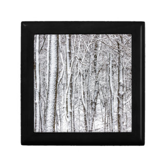 Snow Covered Forest #2.jpg Jewelry Box