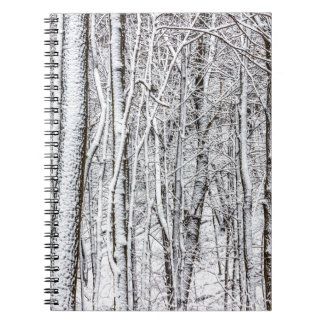 Snow Covered Forest #2.jpg Notebook