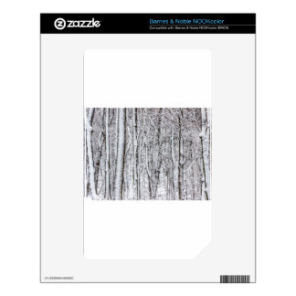 Snow Covered Forest #2.jpg Decal For The NOOK Color