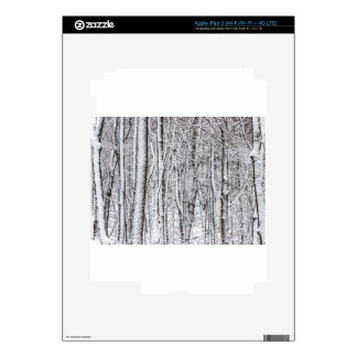 Snow Covered Forest #2.jpg iPad 3 Skins