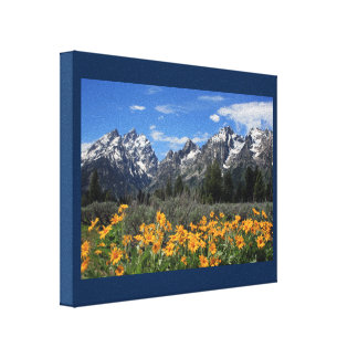 Snow Covered Grand Teton Range with Yellow Flowers Canvas Print