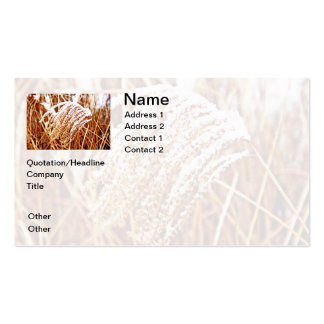 Snow Covered Grass Business Card Templates