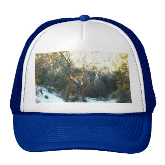 Snow Covered Hill Trucker Hat
