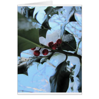 Snow Covered Holly Card