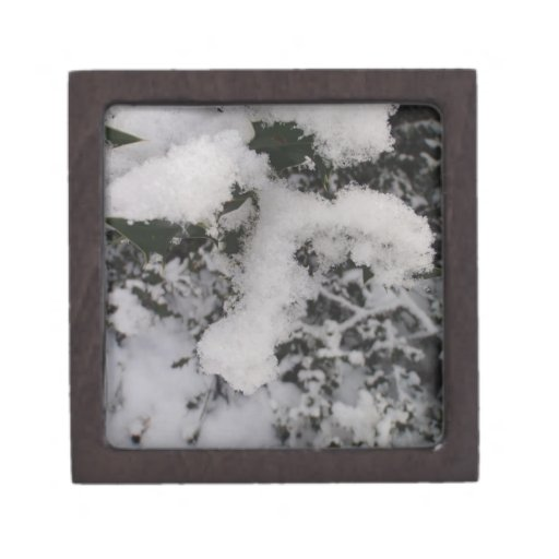 Snow Covered Holly Premium Jewelry Box