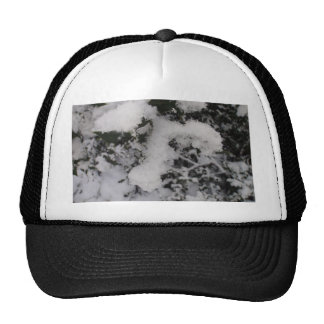 Snow Covered Holly Trucker Hat