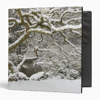 Snow-covered Japanese maple 2 3 Ring Binder