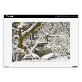 """Snow-covered Japanese maple Decal For 15"""" Laptop"""