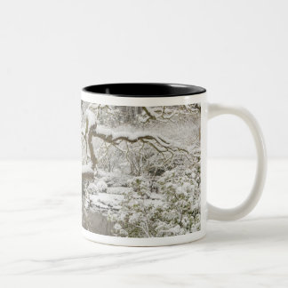Snow-covered Japanese maple Two-Tone Coffee Mug