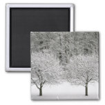 Snow covered landscape 2 inch square magnet