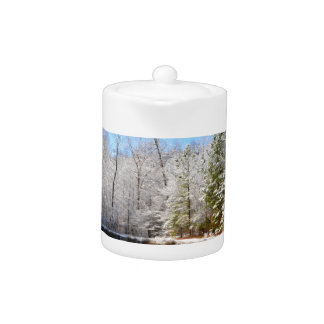 Snow covered landscape around the pond teapot